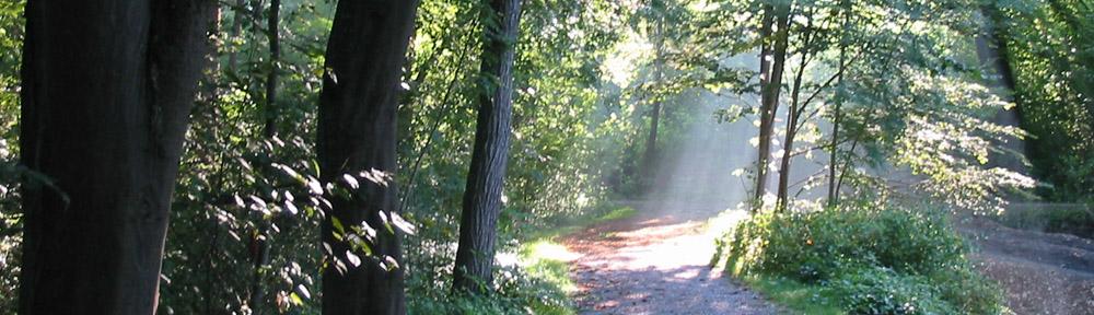 Spinnerei-Kolbermoor-Park